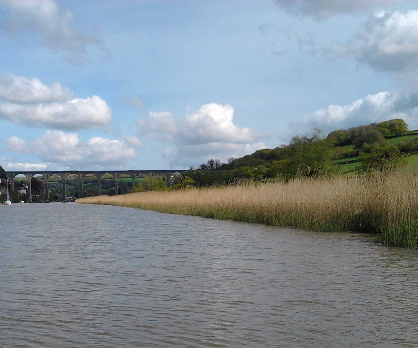 Approaching Calstock by TAVATA